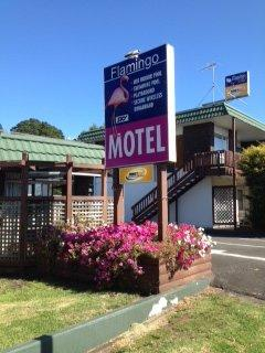Hotels Motels Pets Can Come Too Pet Friendly Holiday Homes New